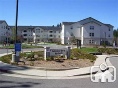 Cottonwood Senior Apartments Placerville Ca