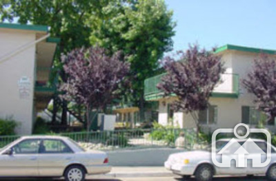 Image of Olivewood Apartments
